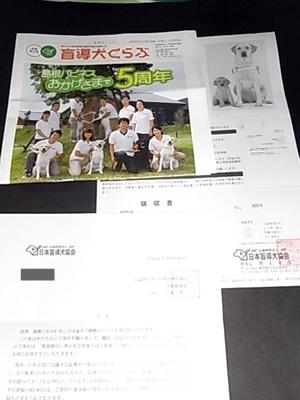日本盲導犬協会からの礼状
